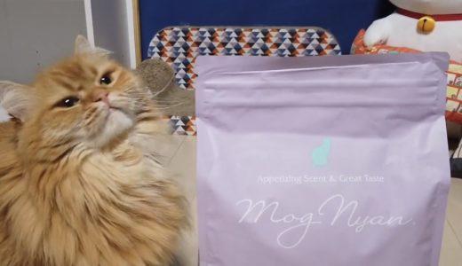 ヘルシーな猫餌「モグニャン」を試してみた